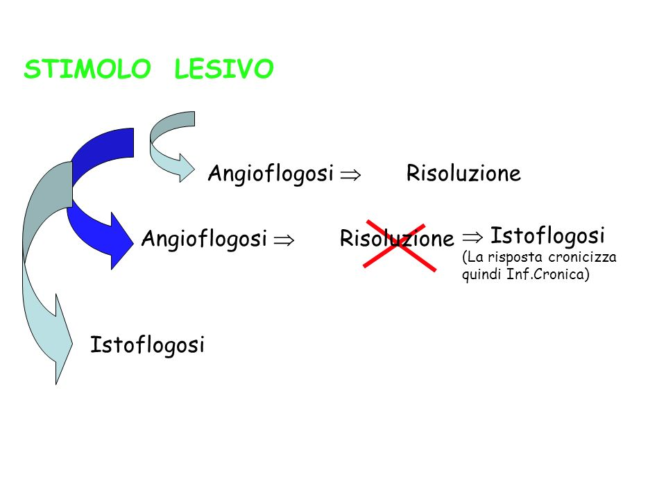 STIMOLO LESIVO Angioflogosi  Risoluzione  Istoflogosi
