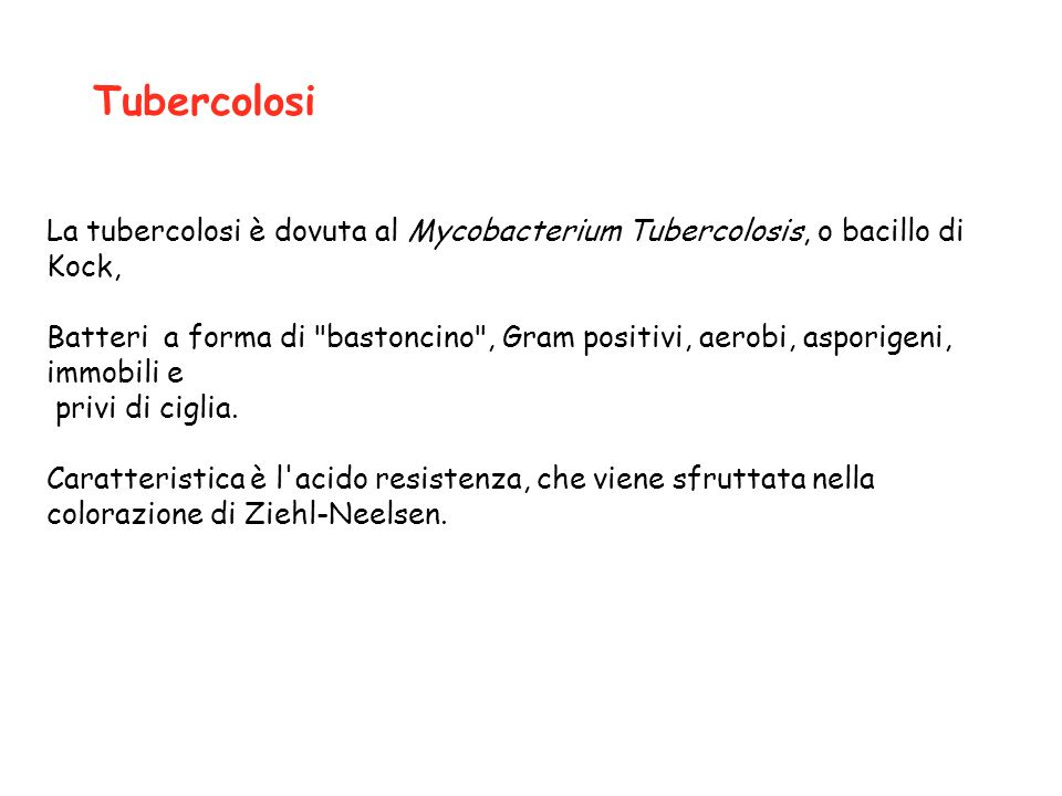 Tubercolosi La tubercolosi è dovuta al Mycobacterium Tubercolosis, o bacillo di Kock,