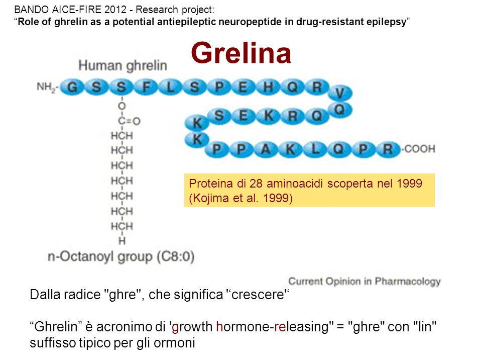 Grelina Dalla radice ghre , che significa 'crescere '