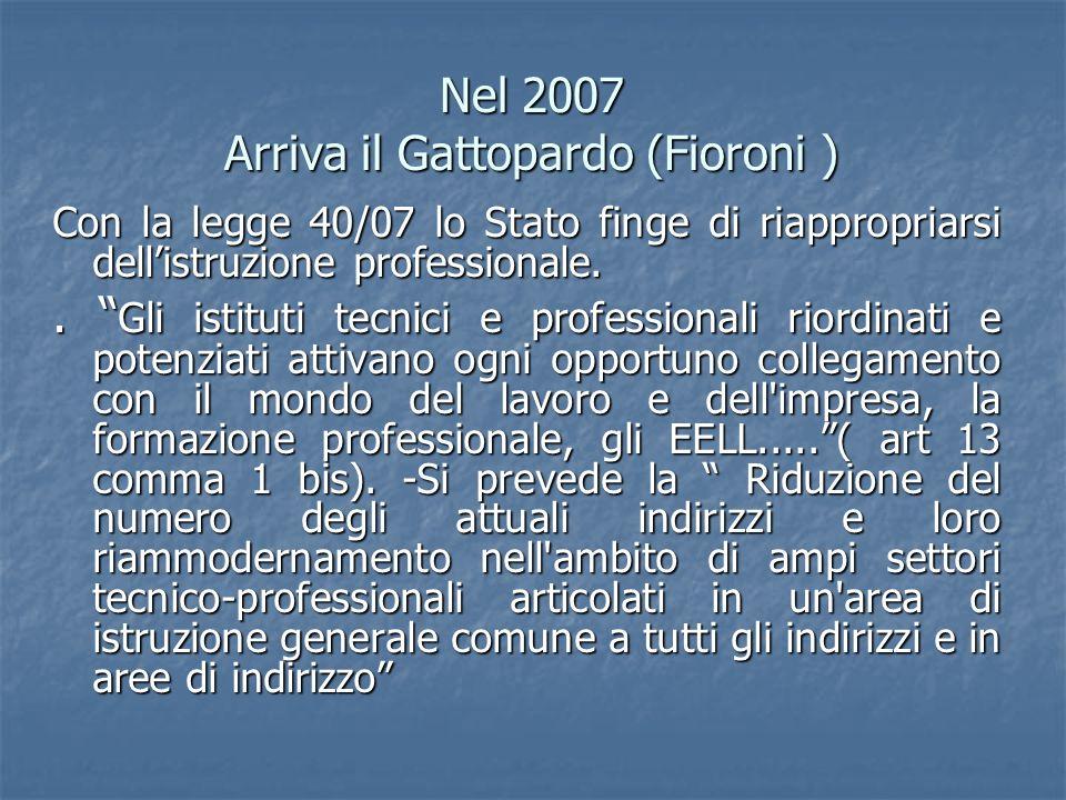 Nel 2007 Arriva il Gattopardo (Fioroni )