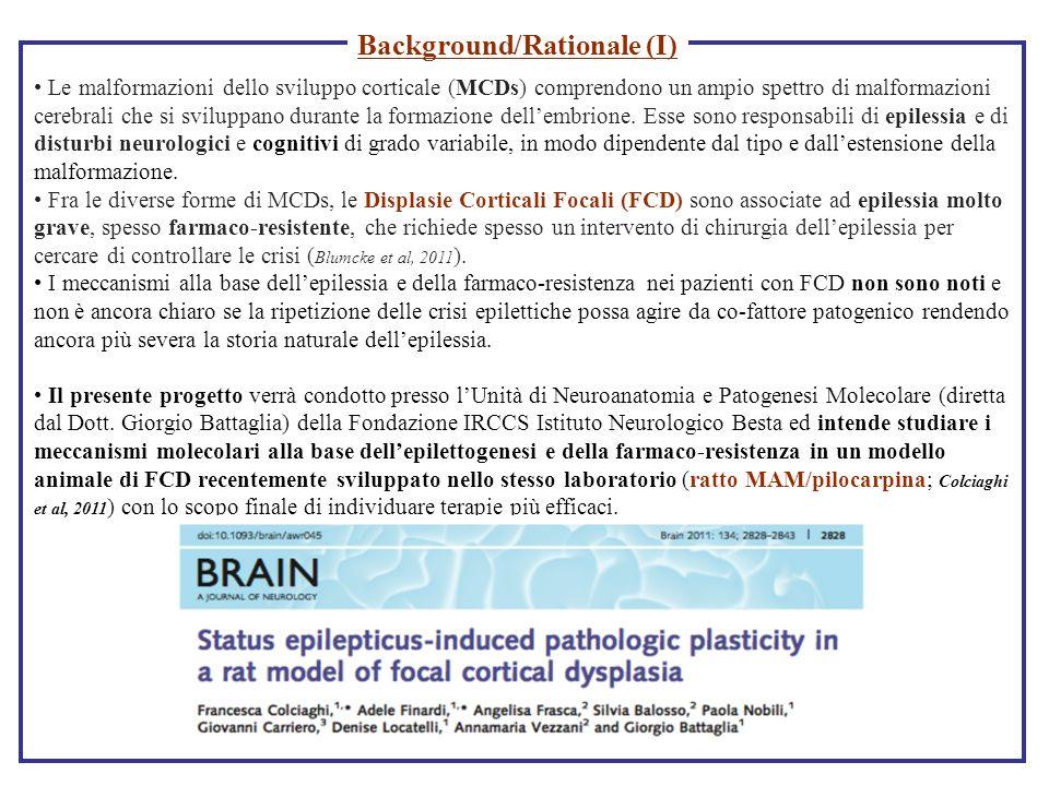 Background/Rationale (I)