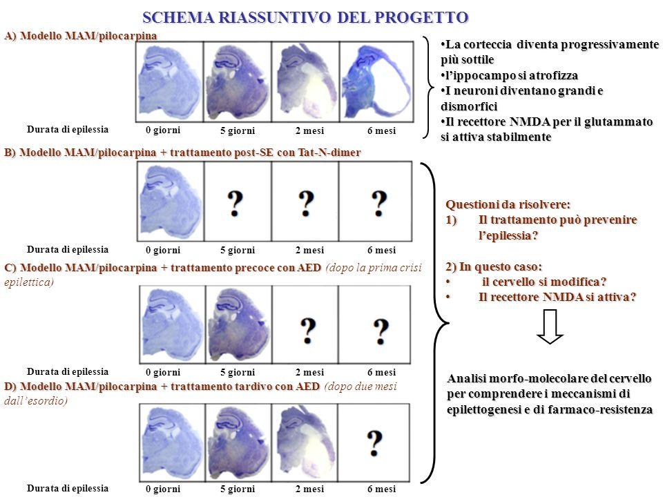 SCHEMA RIASSUNTIVO DEL PROGETTO