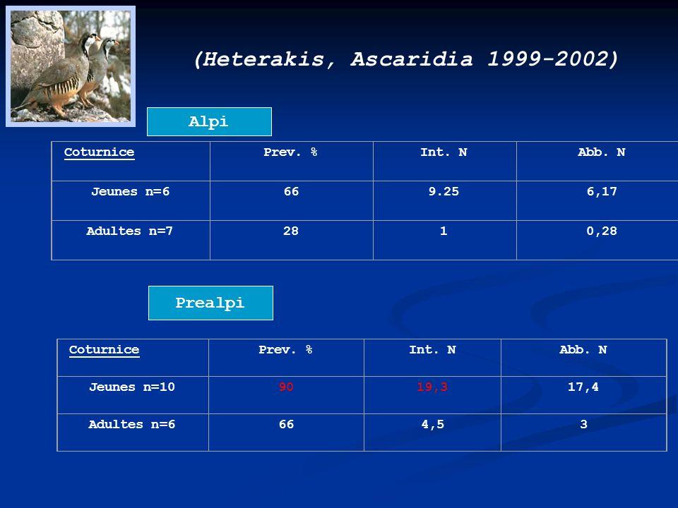 (Heterakis, Ascaridia 1999-2002)