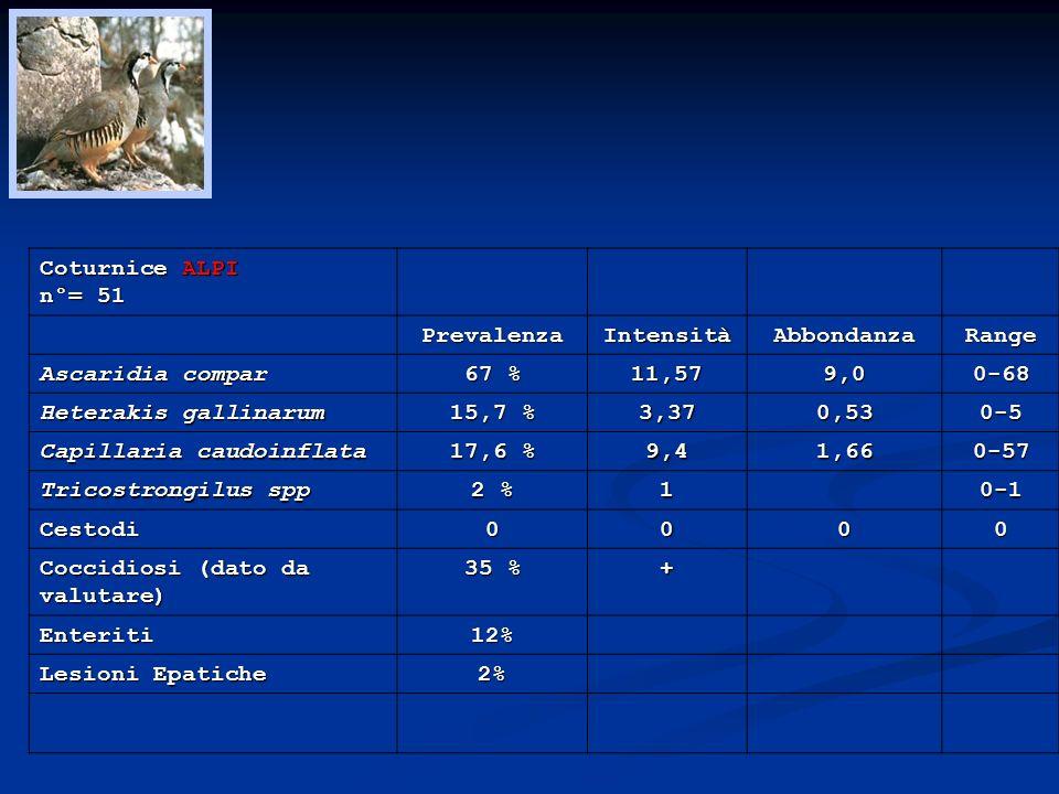 Coturnice ALPI n°= 51. Prevalenza. Intensità. Abbondanza. Range. Ascaridia compar. 67 % 11,57.