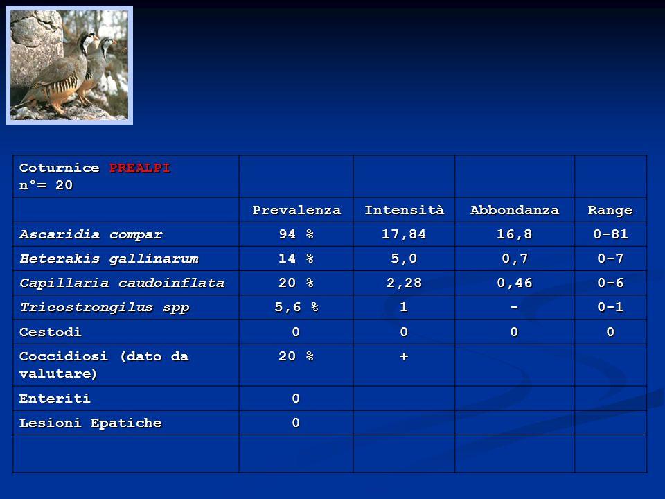 Coturnice PREALPI n°= 20. Prevalenza. Intensità. Abbondanza. Range. Ascaridia compar. 94 % 17,84.
