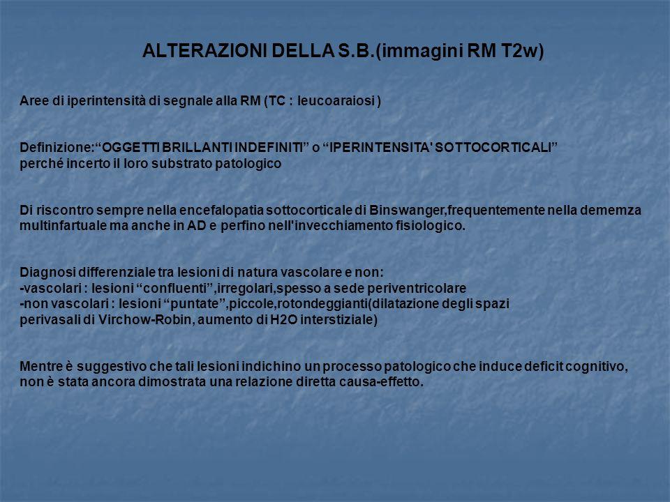 ALTERAZIONI DELLA S.B.(immagini RM T2w)