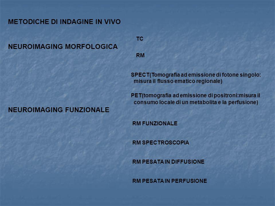 METODICHE DI INDAGINE IN VIVO TC NEUROIMAGING MORFOLOGICA RM