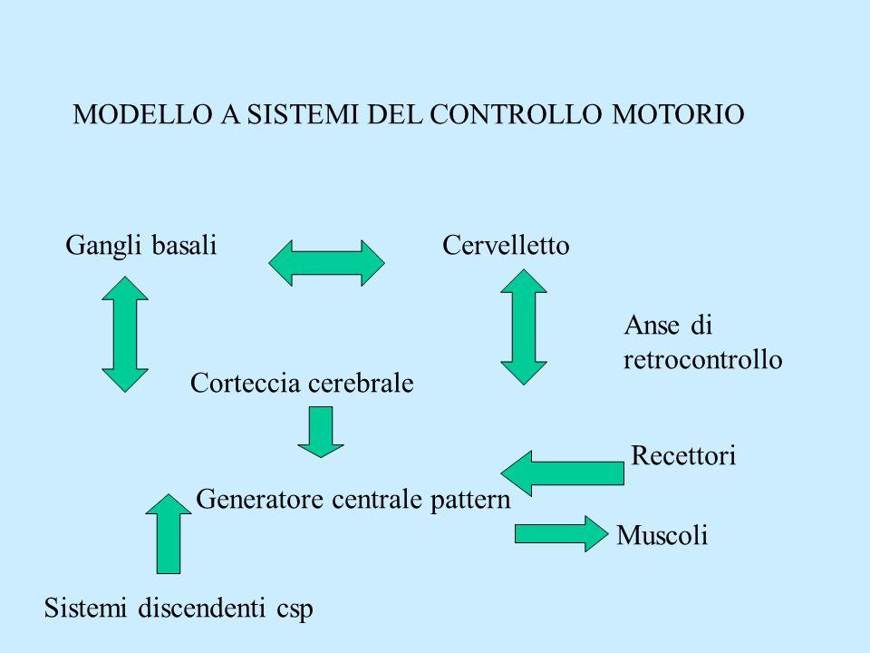 MODELLO A SISTEMI DEL CONTROLLO MOTORIO