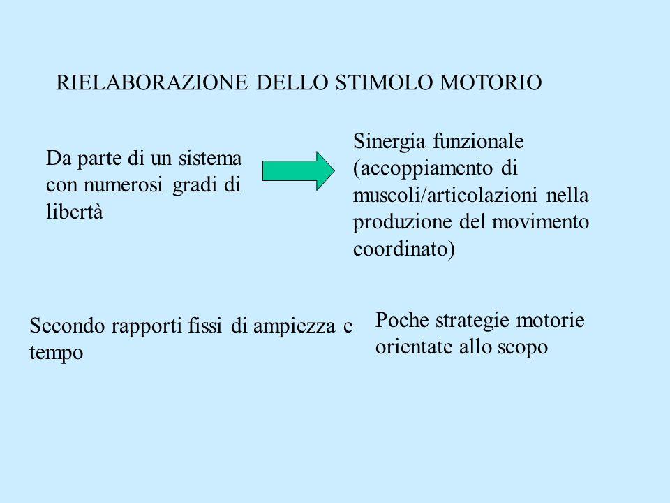 RIELABORAZIONE DELLO STIMOLO MOTORIO
