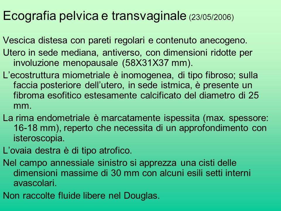 Ecografia pelvica e transvaginale (23/05/2006)