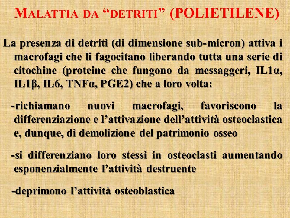 Malattia da detriti (POLIETILENE)
