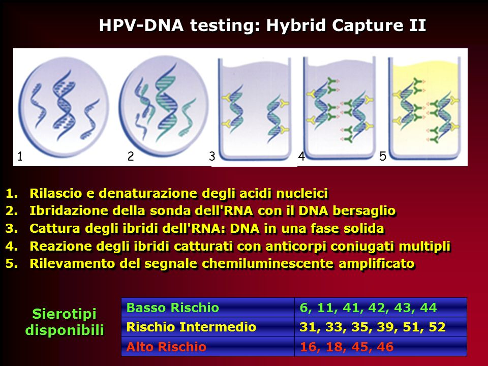 HPV-DNA testing: Hybrid Capture II