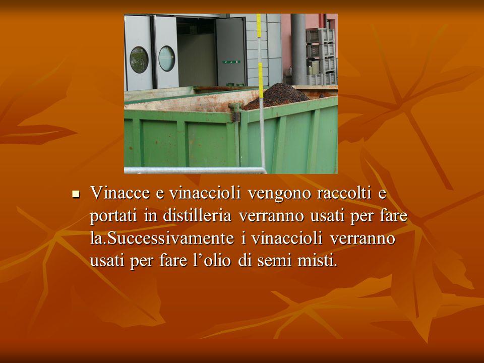 Vinacce e vinaccioli vengono raccolti e portati in distilleria verranno usati per fare la.Successivamente i vinaccioli verranno usati per fare l'olio di semi misti.