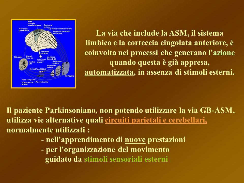 La via che include la ASM, il sistema limbico e la corteccia cingolata anteriore, è coinvolta nei processi che generano l azione quando questa è già appresa, automatizzata, in assenza di stimoli esterni.