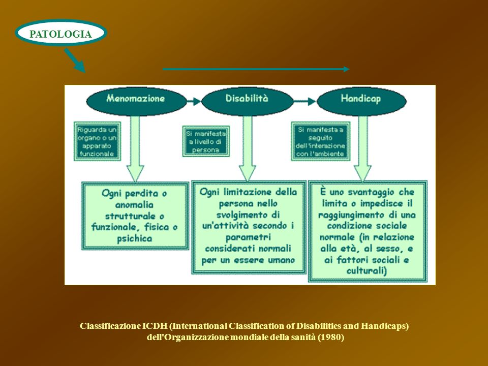 dell Organizzazione mondiale della sanità (1980)
