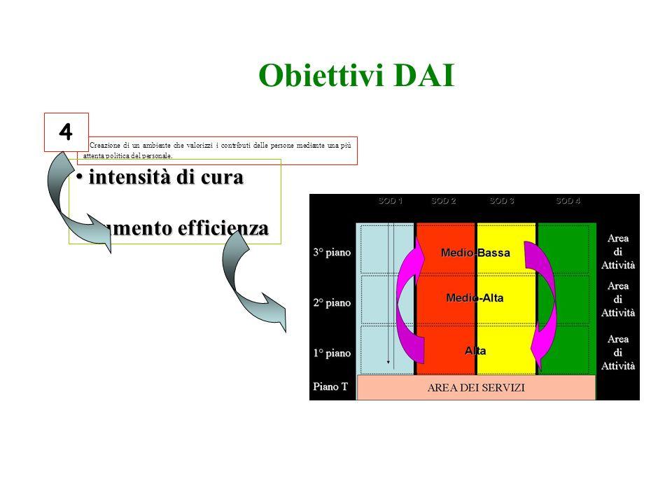 Obiettivi DAI 4 intensità di cura aumento efficienza 12/06/09