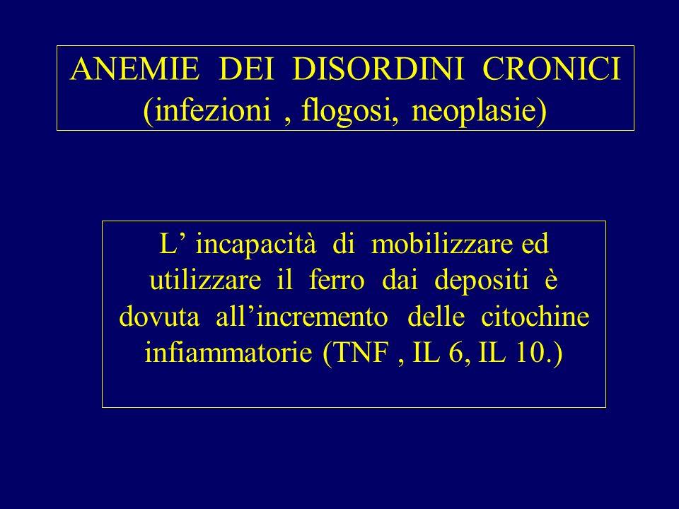 ANEMIE DEI DISORDINI CRONICI (infezioni , flogosi, neoplasie)