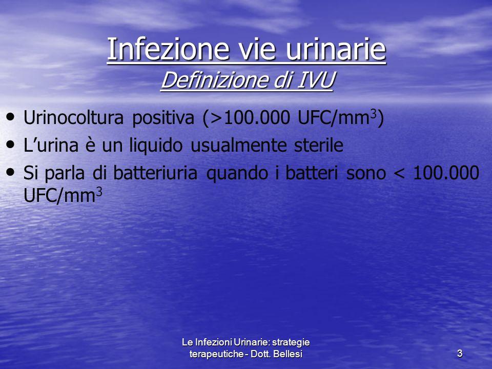 Infezione vie urinarie Definizione di IVU