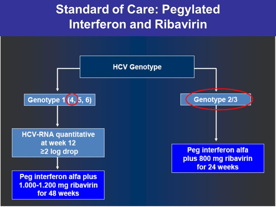 Standard of Care: Pegylated Interferon and Ribavirin