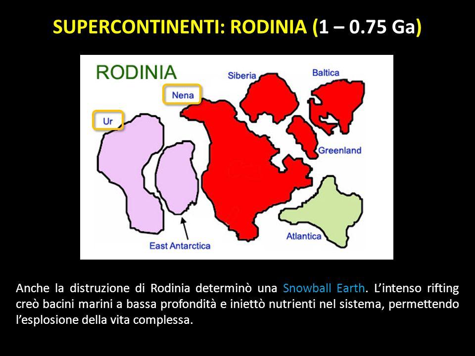 SUPERCONTINENTI: RODINIA (1 – 0.75 Ga)