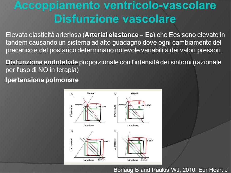 Accoppiamento ventricolo-vascolare Disfunzione vascolare