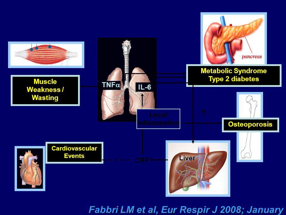 Fabbri LM et al, Eur Respir J 2008; January