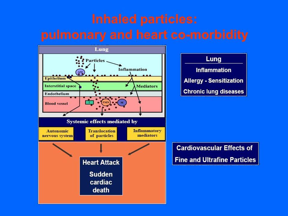Inhaled particles: pulmonary and heart co-morbidity