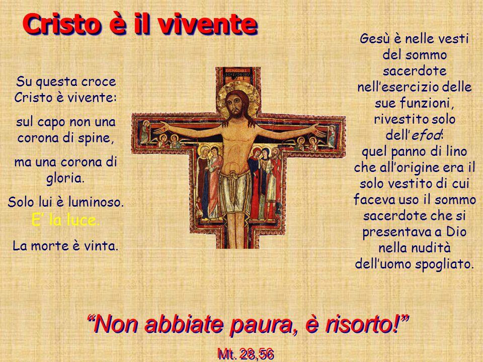 Cristo è il vivente Non abbiate paura, è risorto!