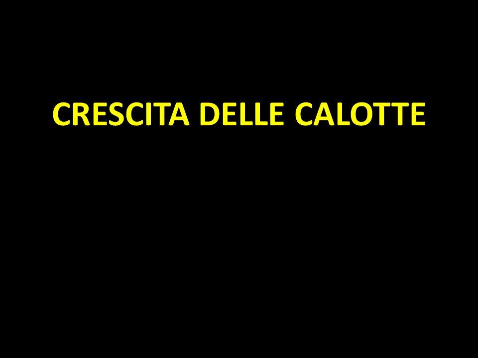 CRESCITA DELLE CALOTTE