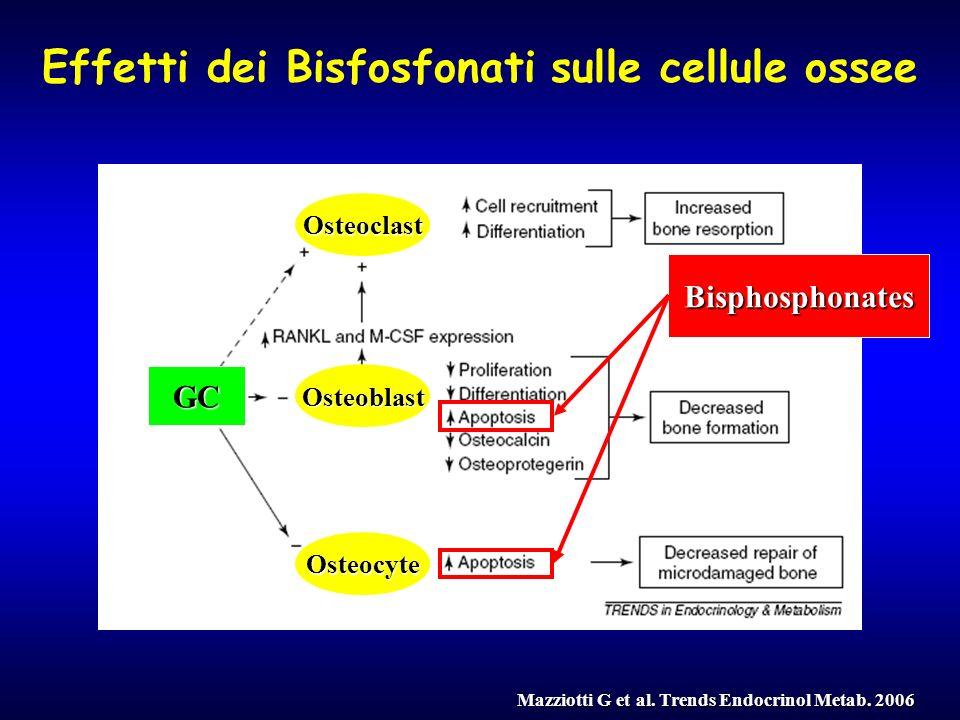 Effetti dei Bisfosfonati sulle cellule ossee