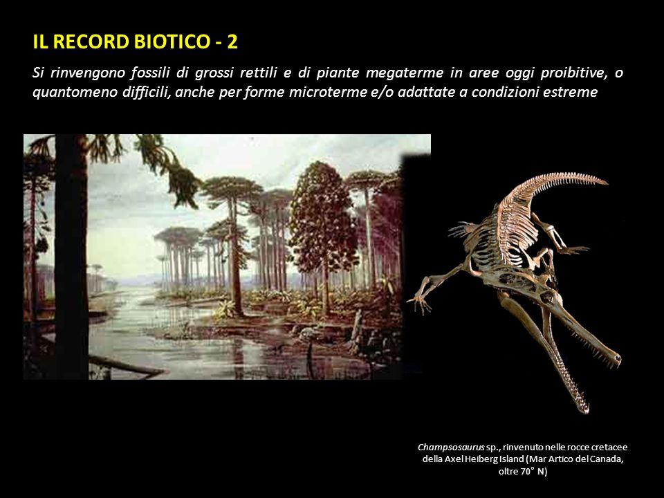 IL RECORD BIOTICO - 2