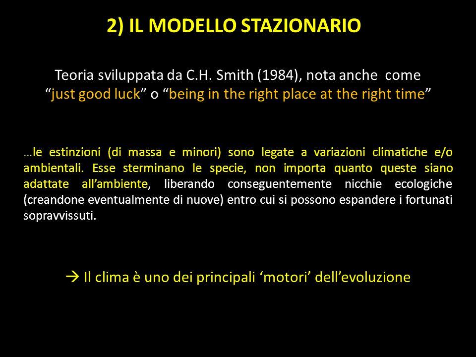 2) IL MODELLO STAZIONARIO