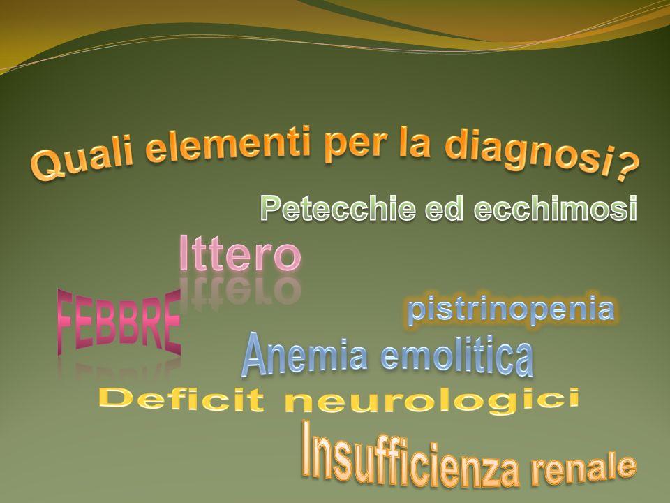 Quali elementi per la diagnosi Petecchie ed ecchimosi