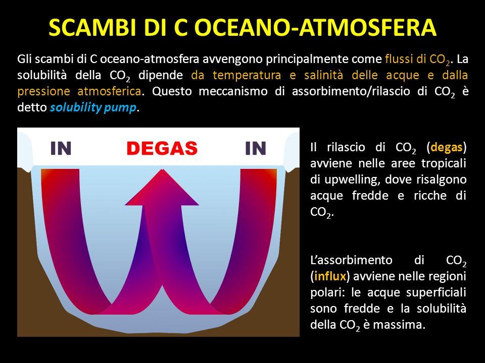 SCAMBI DI C OCEANO-ATMOSFERA