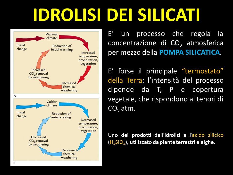 IDROLISI DEI SILICATI E' un processo che regola la concentrazione di CO2 atmosferica per mezzo della POMPA SILICATICA.
