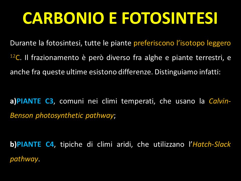 CARBONIO E FOTOSINTESI