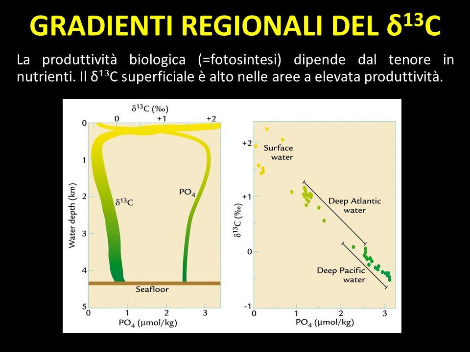 GRADIENTI REGIONALI DEL δ13C