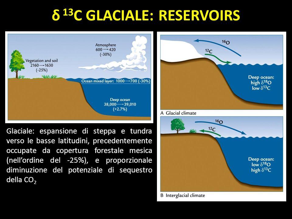 δ 13C GLACIALE: RESERVOIRS