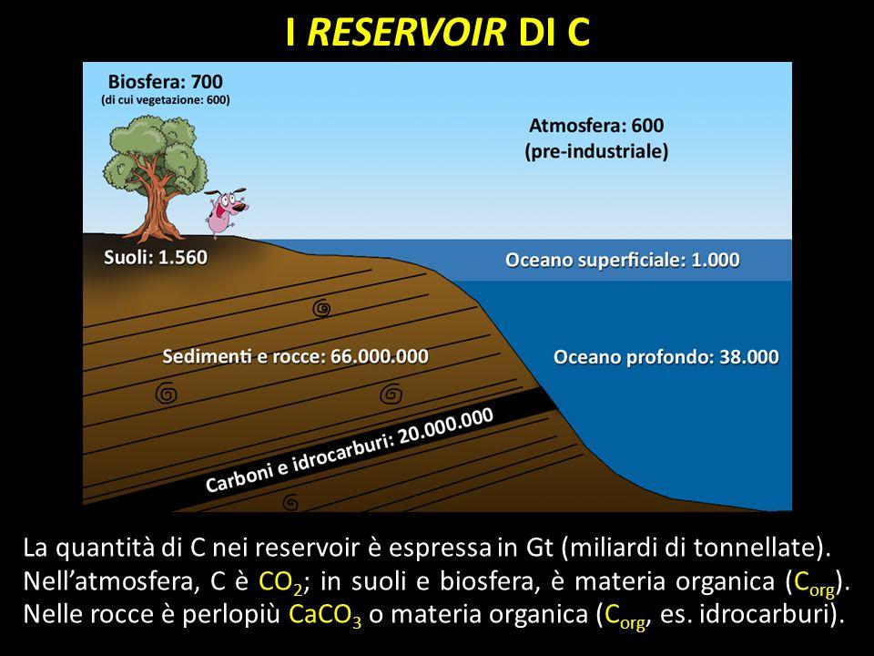 I RESERVOIR DI C La quantità di C nei reservoir è espressa in Gt (miliardi di tonnellate).