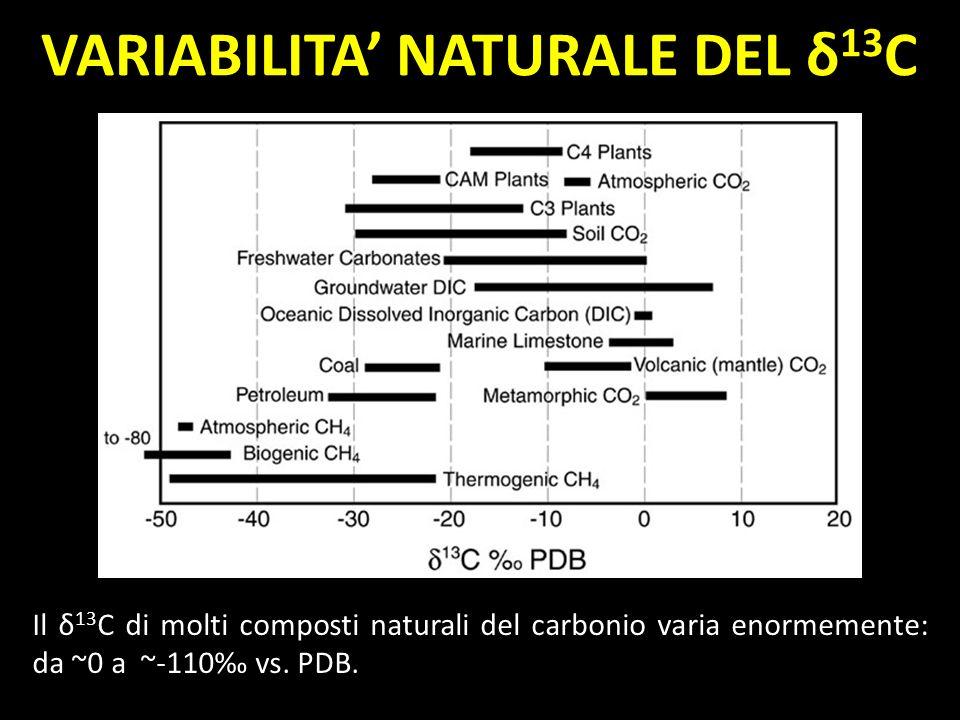 VARIABILITA' NATURALE DEL δ13C