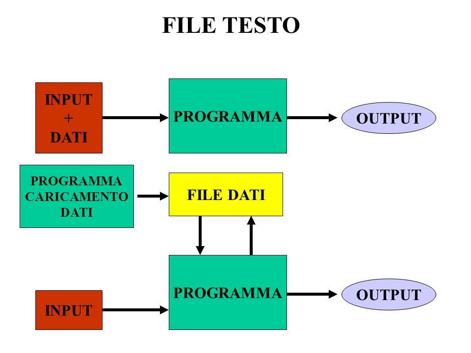 FILE TESTO INPUT PROGRAMMA + DATI OUTPUT FILE DATI PROGRAMMA OUTPUT