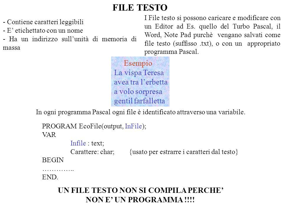 UN FILE TESTO NON SI COMPILA PERCHE' NON E' UN PROGRAMMA !!!!