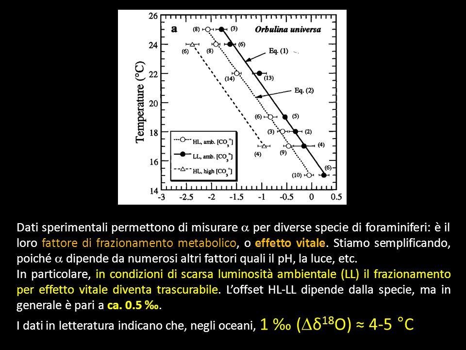 Dati sperimentali permettono di misurare a per diverse specie di foraminiferi: è il loro fattore di frazionamento metabolico, o effetto vitale. Stiamo semplificando, poiché a dipende da numerosi altri fattori quali il pH, la luce, etc.