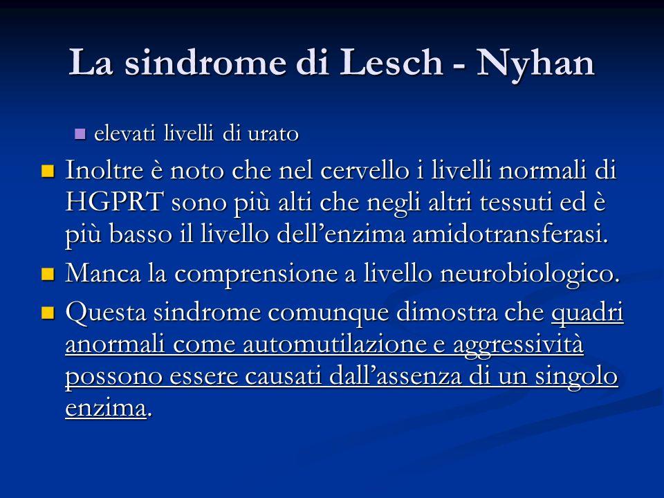 La sindrome di Lesch - Nyhan