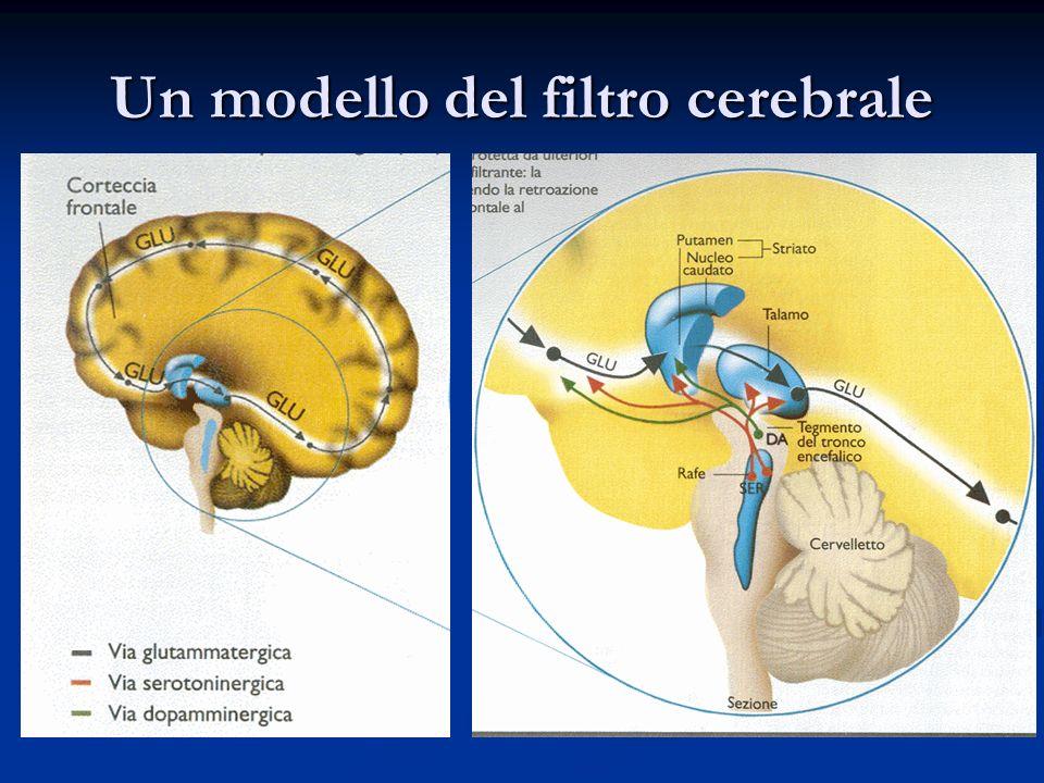 Un modello del filtro cerebrale