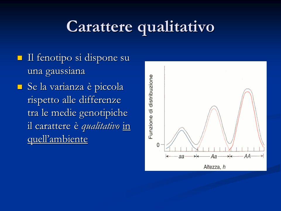 Carattere qualitativo