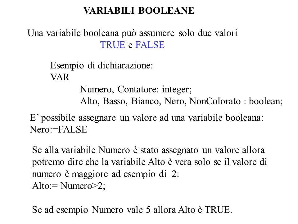 Una variabile booleana può assumere solo due valori