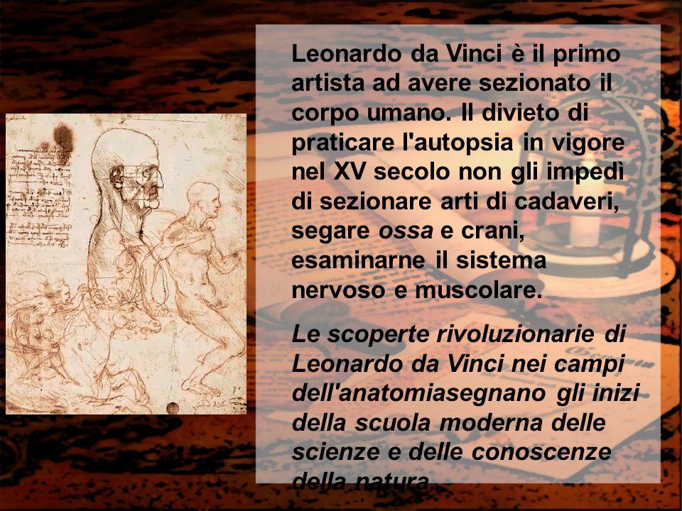 Leonardo da Vinci è il primo artista ad avere sezionato il corpo umano