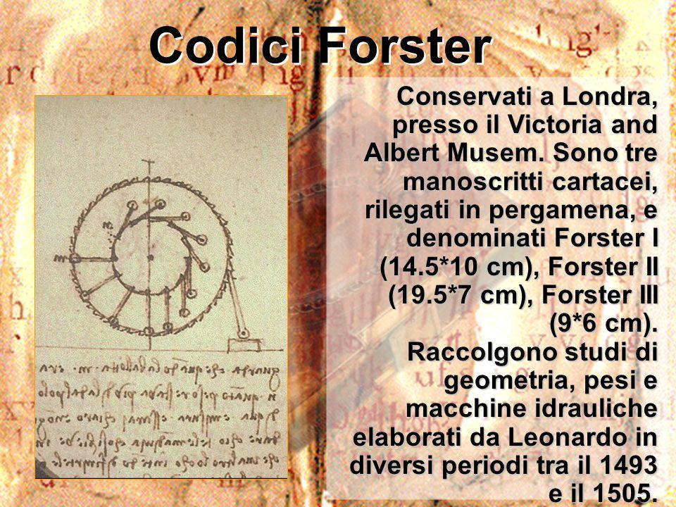 Codici Forster
