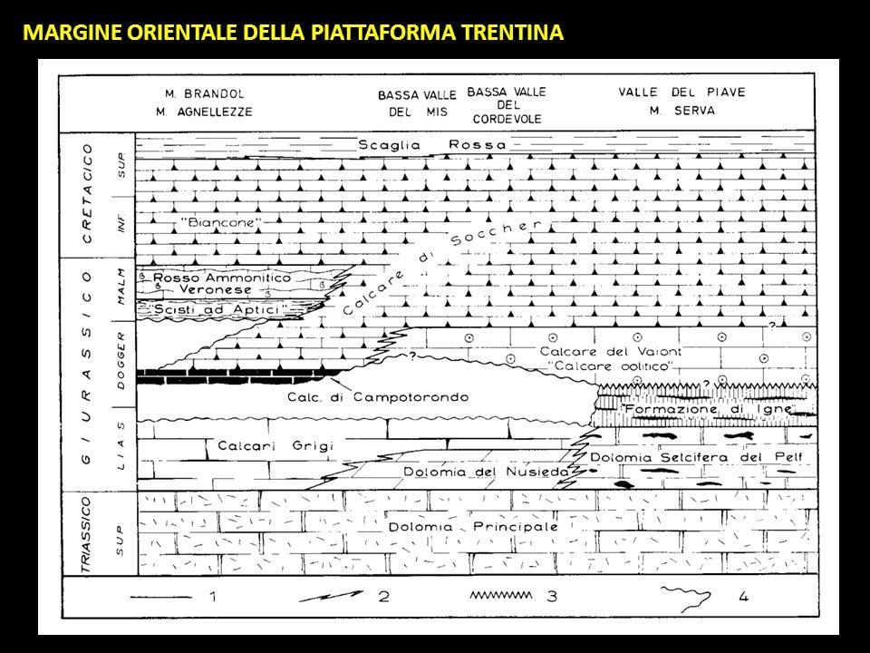 MARGINE ORIENTALE DELLA PIATTAFORMA TRENTINA